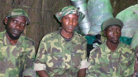 ADF-NALU is Africa Great Lakes' version of Boko Haram