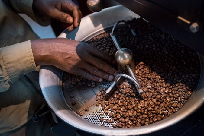 Coffee Industry Revives in DRC, Ghana